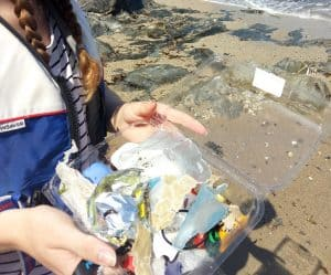 A friend holds a tray of plastic litter which had been picked up from the beach.