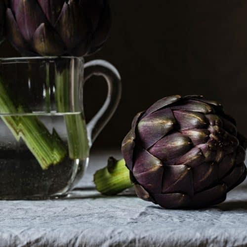 provance artichoke